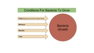 Bacteria Growth Conditions