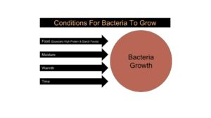Conditions For Bacteria Growth Diagram
